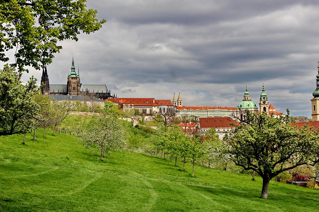 Images Prague Czech Republic Castles Trees Cities Building castle Houses