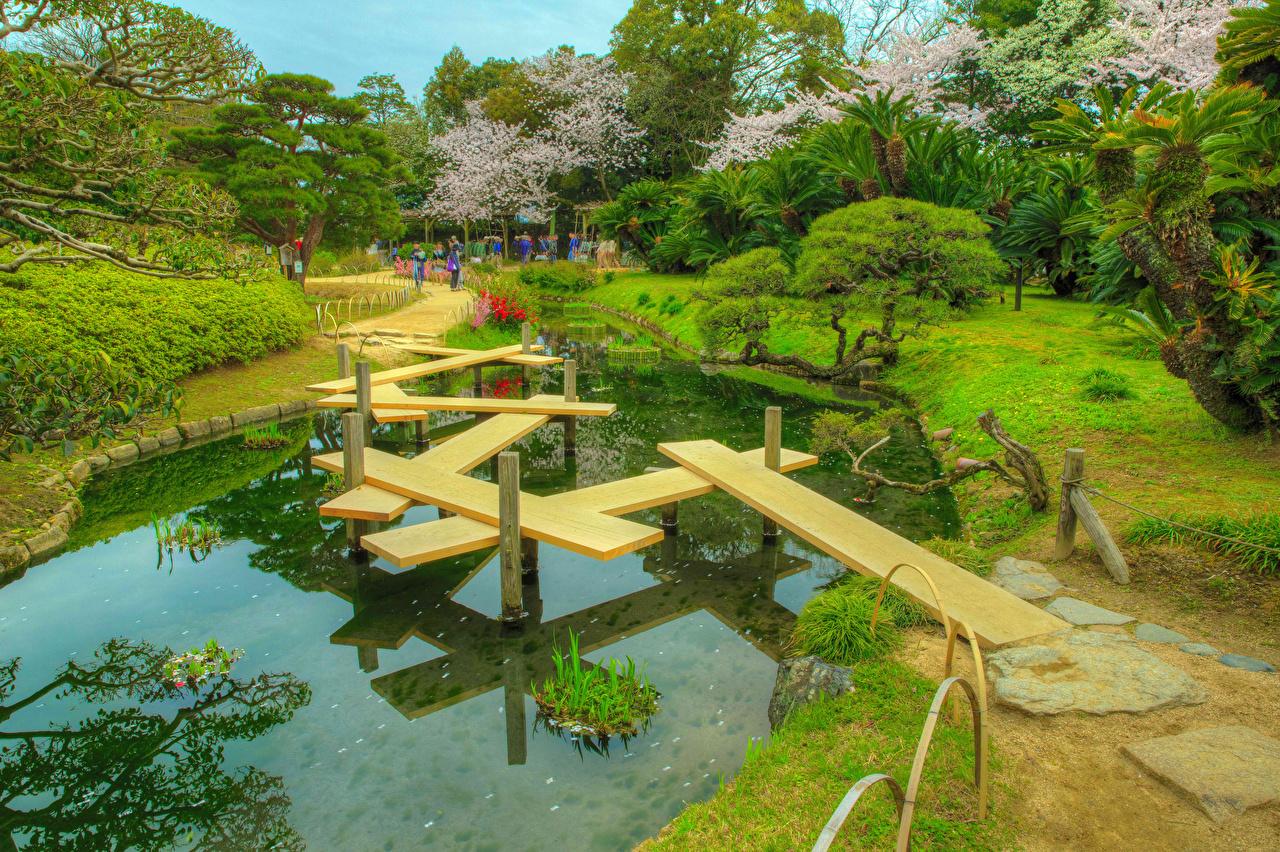 Bilder von Japan Okayama Korakuen Garden HDR Natur Brücken Parks Teich Kakteen Bäume HDRI Brücke Park