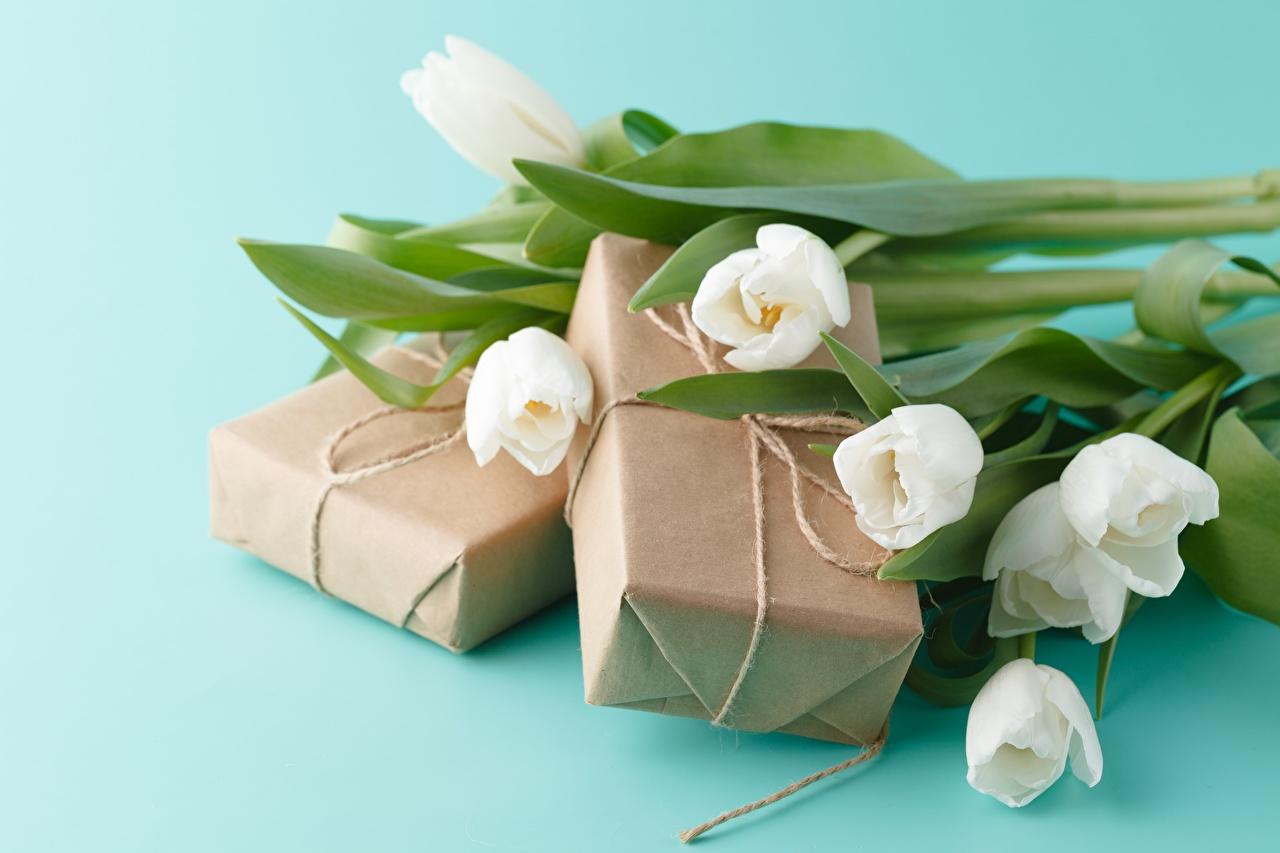 Foto Blumensträuße Tulpen Blüte Geschenke Farbigen hintergrund Sträuße Blumen