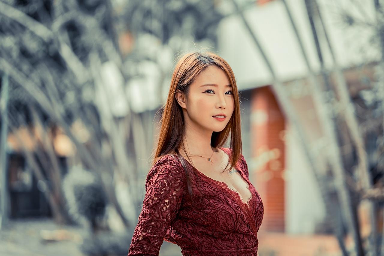 Bilder von Braunhaarige Bokeh junge frau Asiatische Blick Braune Haare unscharfer Hintergrund Mädchens junge Frauen Asiaten asiatisches Starren