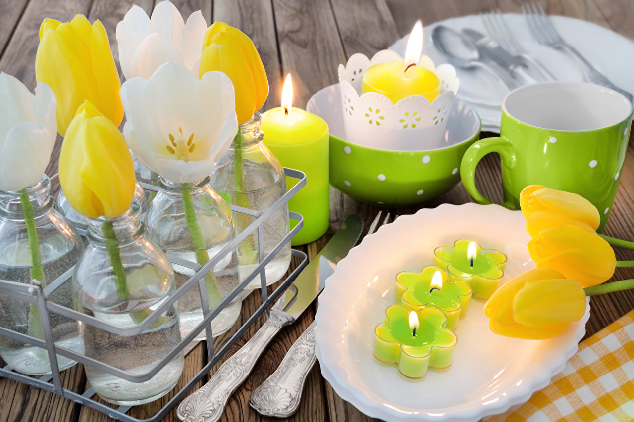 Picture Tulips flower Cup Plate Candles tulip Flowers