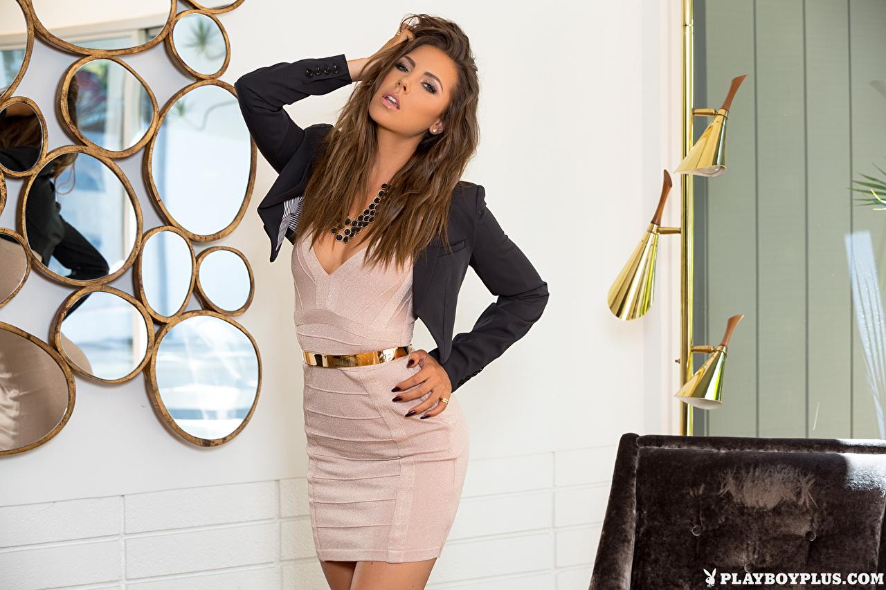 Bilder Gia Ramey-Gay Braune Haare Pose junge frau Hand Playboy Blick Kleid Braunhaarige posiert Mädchens junge Frauen Starren