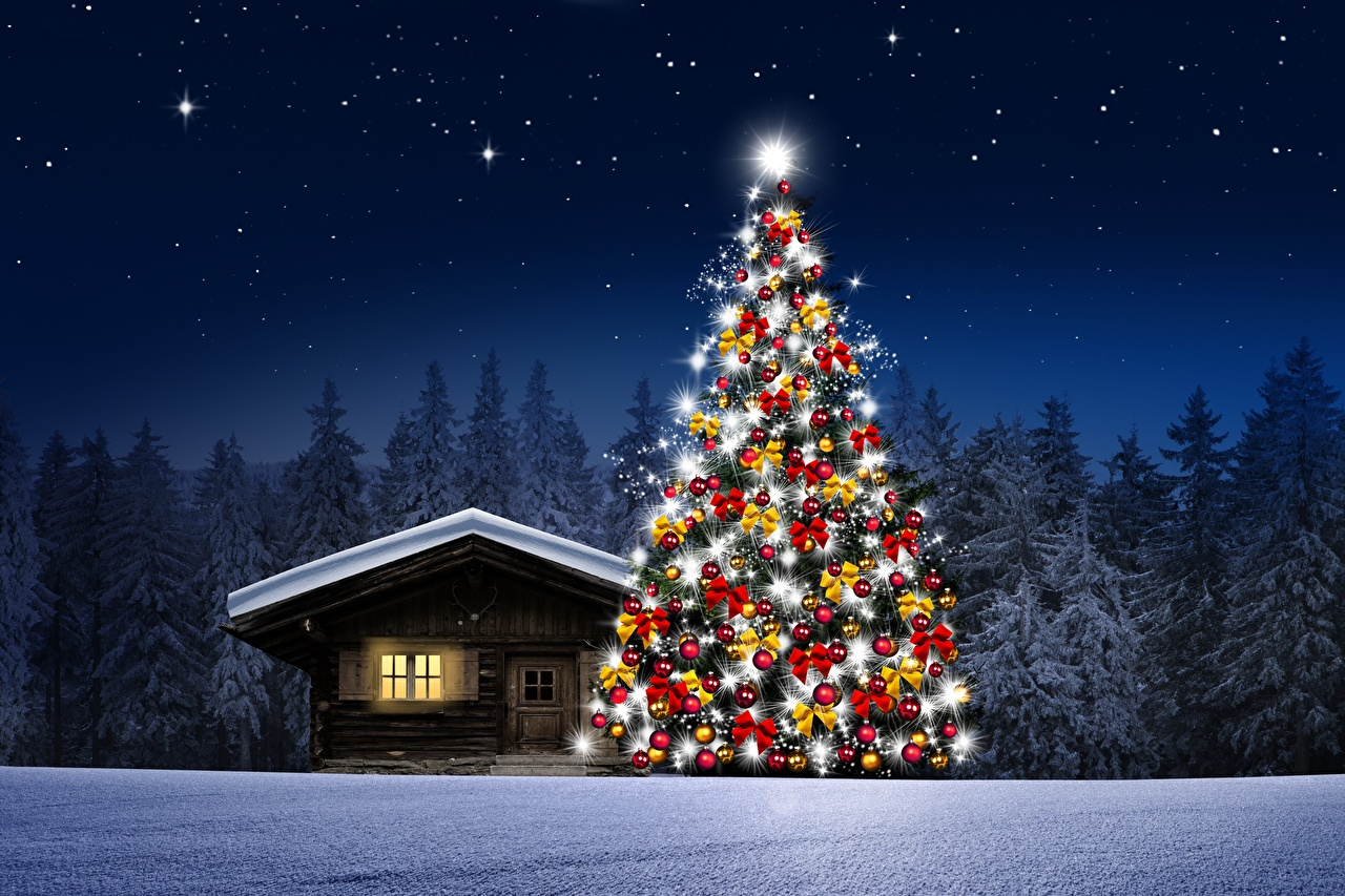 Fondos De Pantalla Casa Bosques Noche Arbol De Navidad Nieve