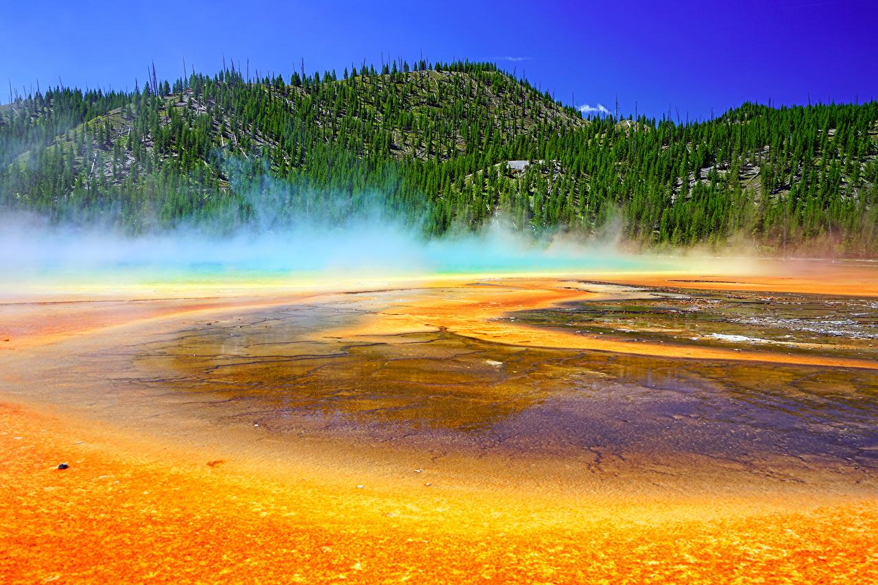 壁紙 アメリカ合衆国 公園 山 湖 森林 イエローストーン国立公園