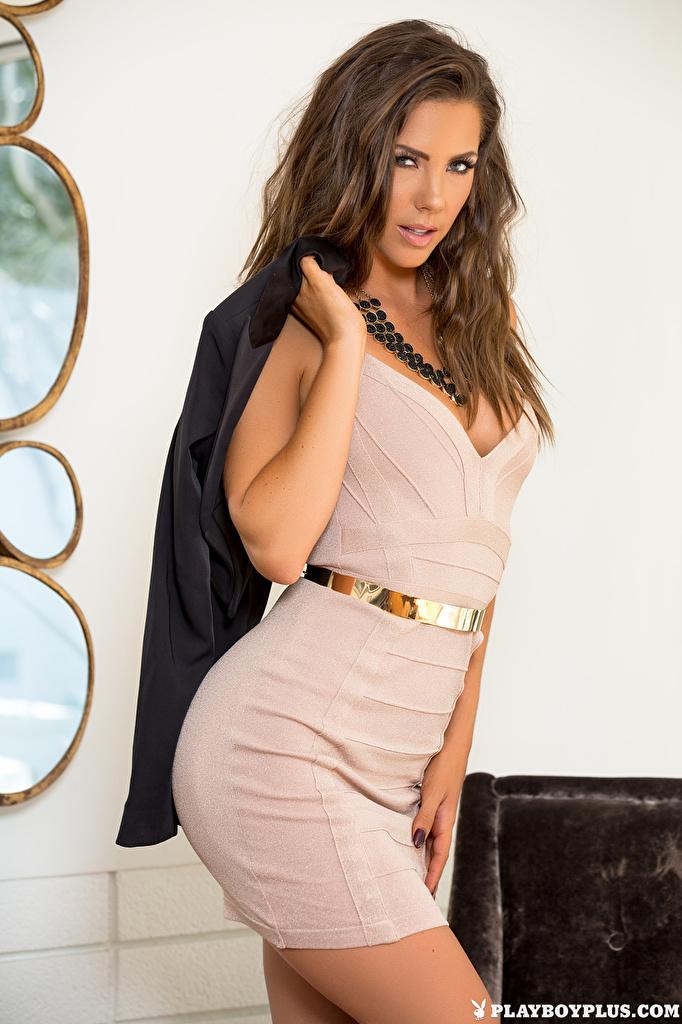 Foto Gia Ramey-Gay Braunhaarige Pose junge Frauen Hand Playboy Starren Kleid  für Handy Braune Haare posiert Mädchens junge frau Blick