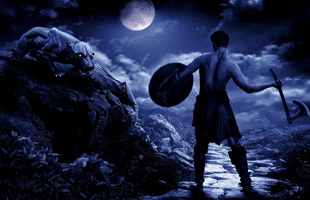 Foto Schwarzer Panther Schild (Schutzwaffe) Streitaxt Krieger Fantasy Mond Nacht