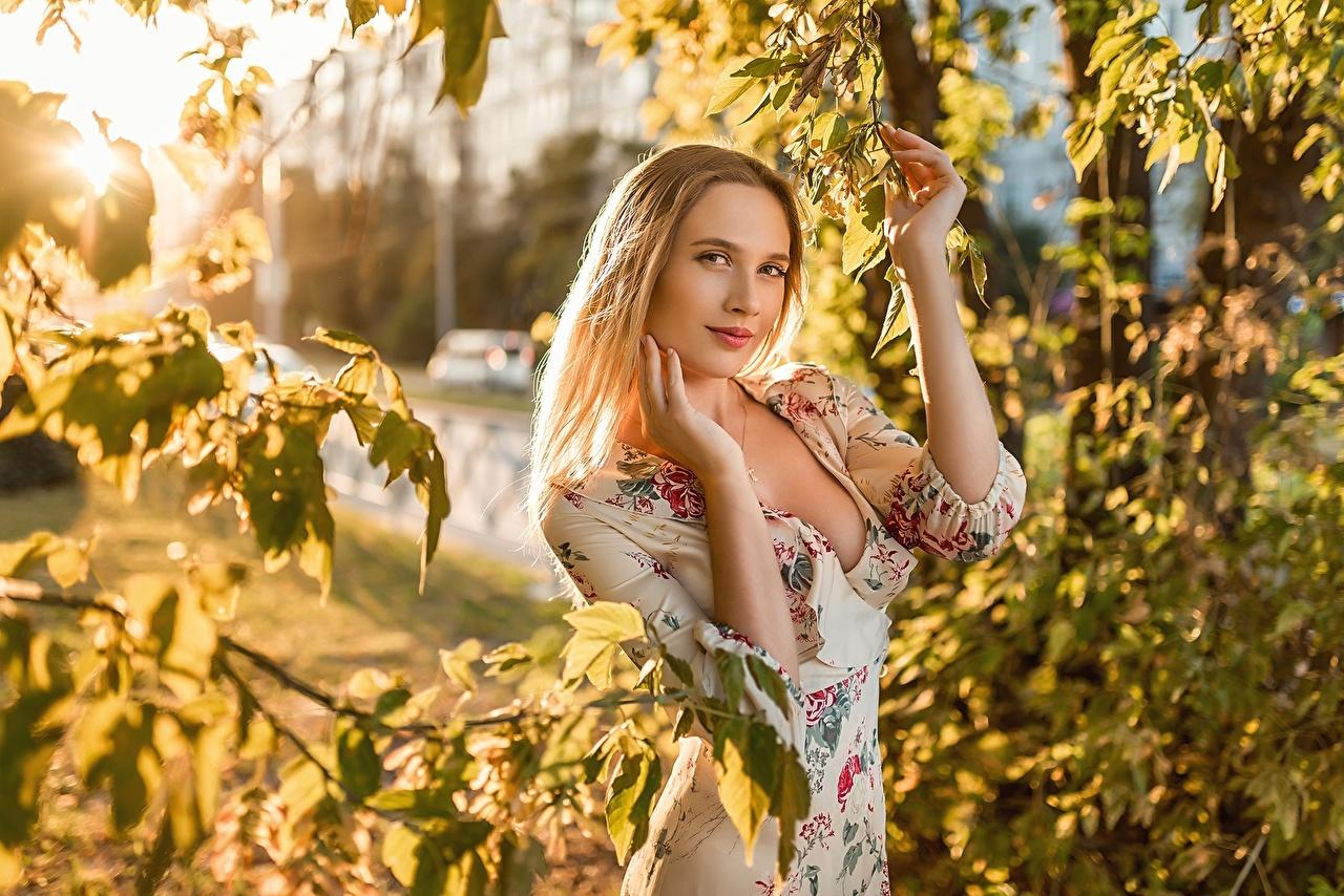 Bilder von Georgiy Dyakov Blattwerk Blond Mädchen junge frau Ast Hand Blick Kleid Blatt Blondine Mädchens junge Frauen Starren