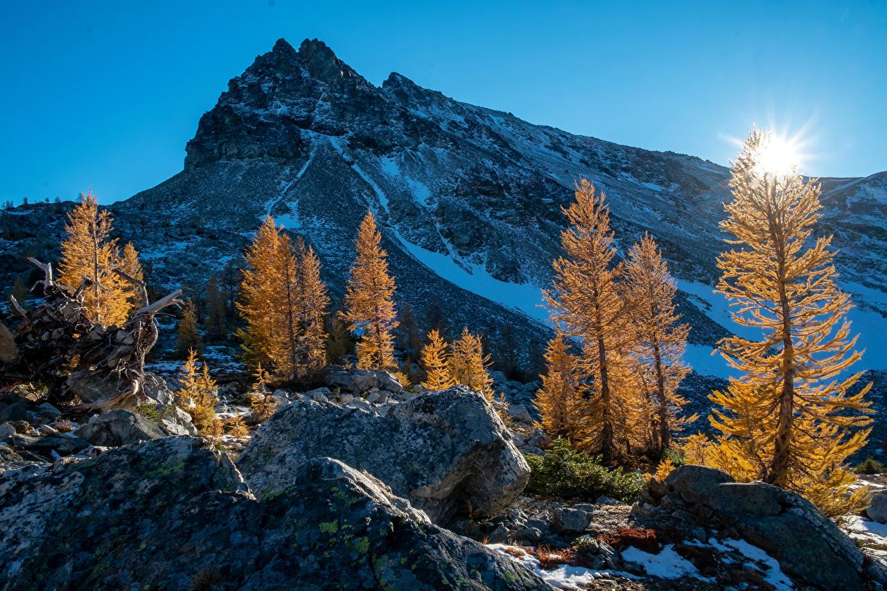 Fotos von Washington Vereinigte Staaten Natur Sonne Herbst Gebirge Schnee Sonnenaufgänge und Sonnenuntergänge Bäume USA