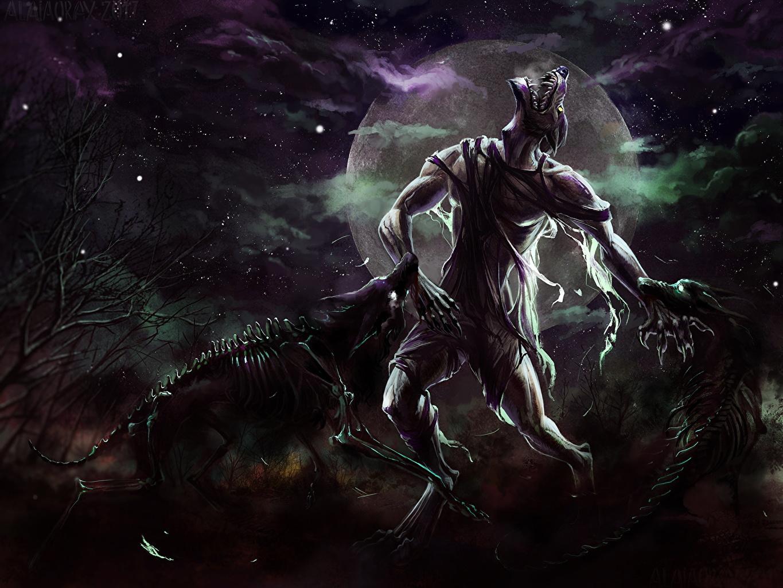 Desktop Wallpapers Wolf Monster Lycanthrope Fantasy Skeleton Moon