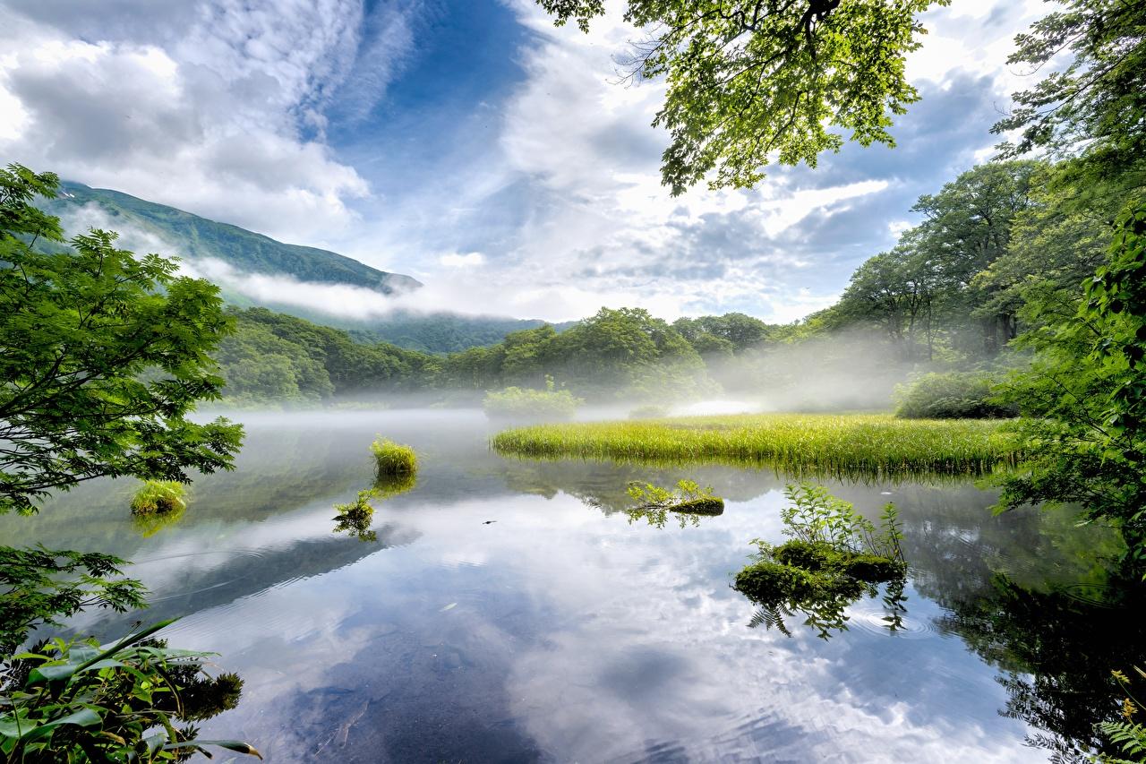 Photo Japan Nara Prefecture Fog Nature Lake