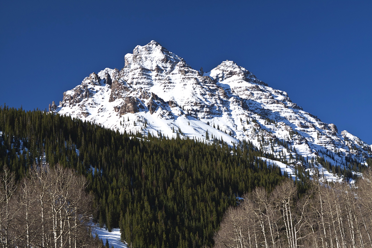 Photo White River National Forest Aspen Colorado Nature mountain