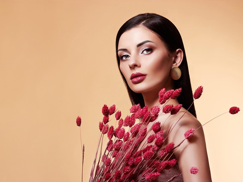 Desktop Hintergrundbilder Model Schminke Schön Sträuße Mädchens Starren Farbigen hintergrund Make Up hübsch schöne hübsche schöner schönes hübscher Blumensträuße junge frau junge Frauen Blick