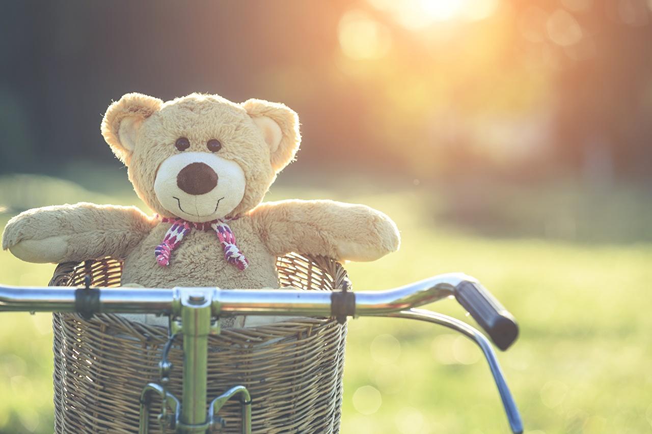Wallpaper Bicycle handlebar Teddy bear Wicker basket
