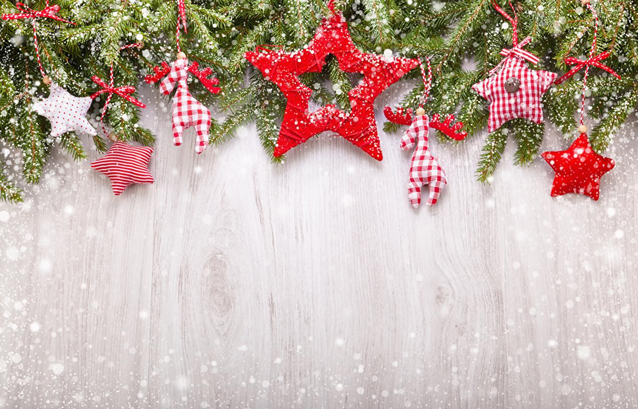 Fotos von Hirsche Neujahr Stern-Dekoration Schnee Ast