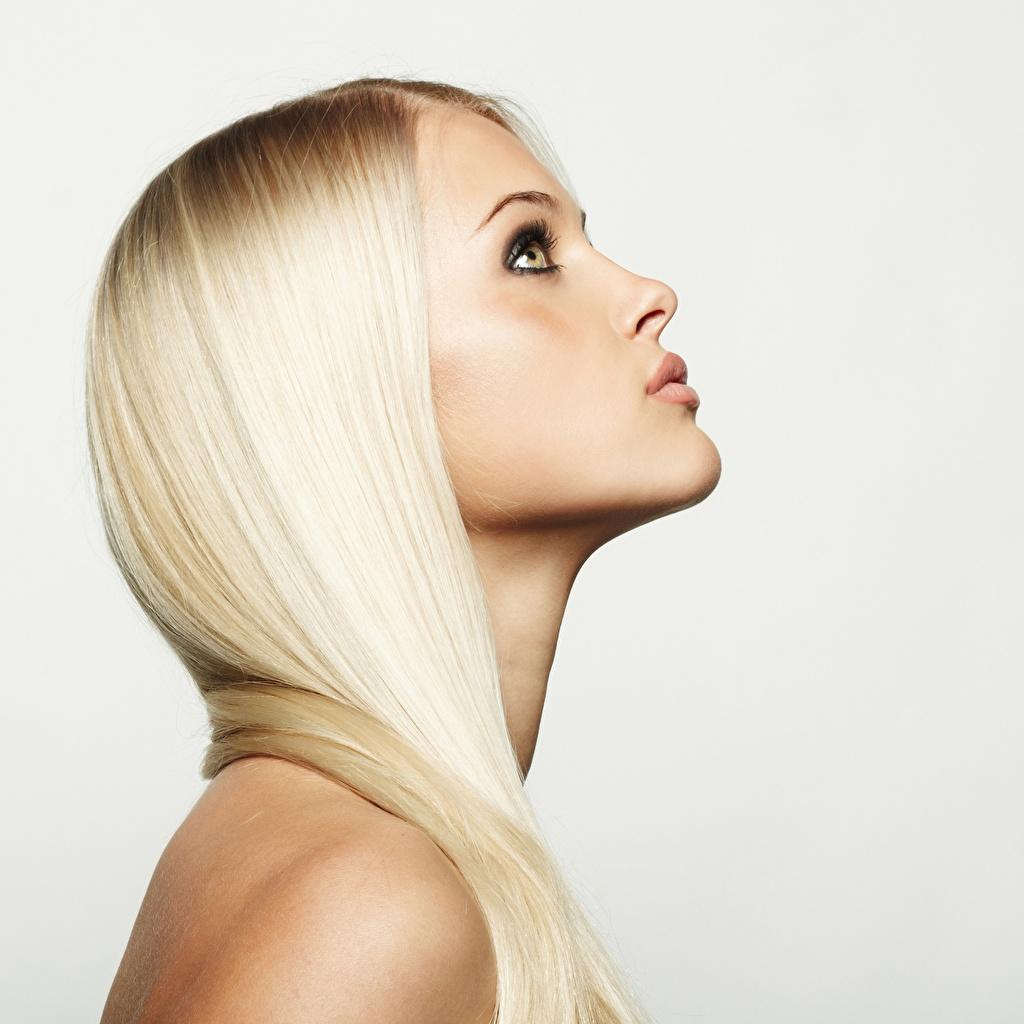 Foto Blondine Model schöner Haar Mädchens Grauer Hintergrund Blond Mädchen Schön schöne hübsch schönes hübsche hübscher junge frau junge Frauen