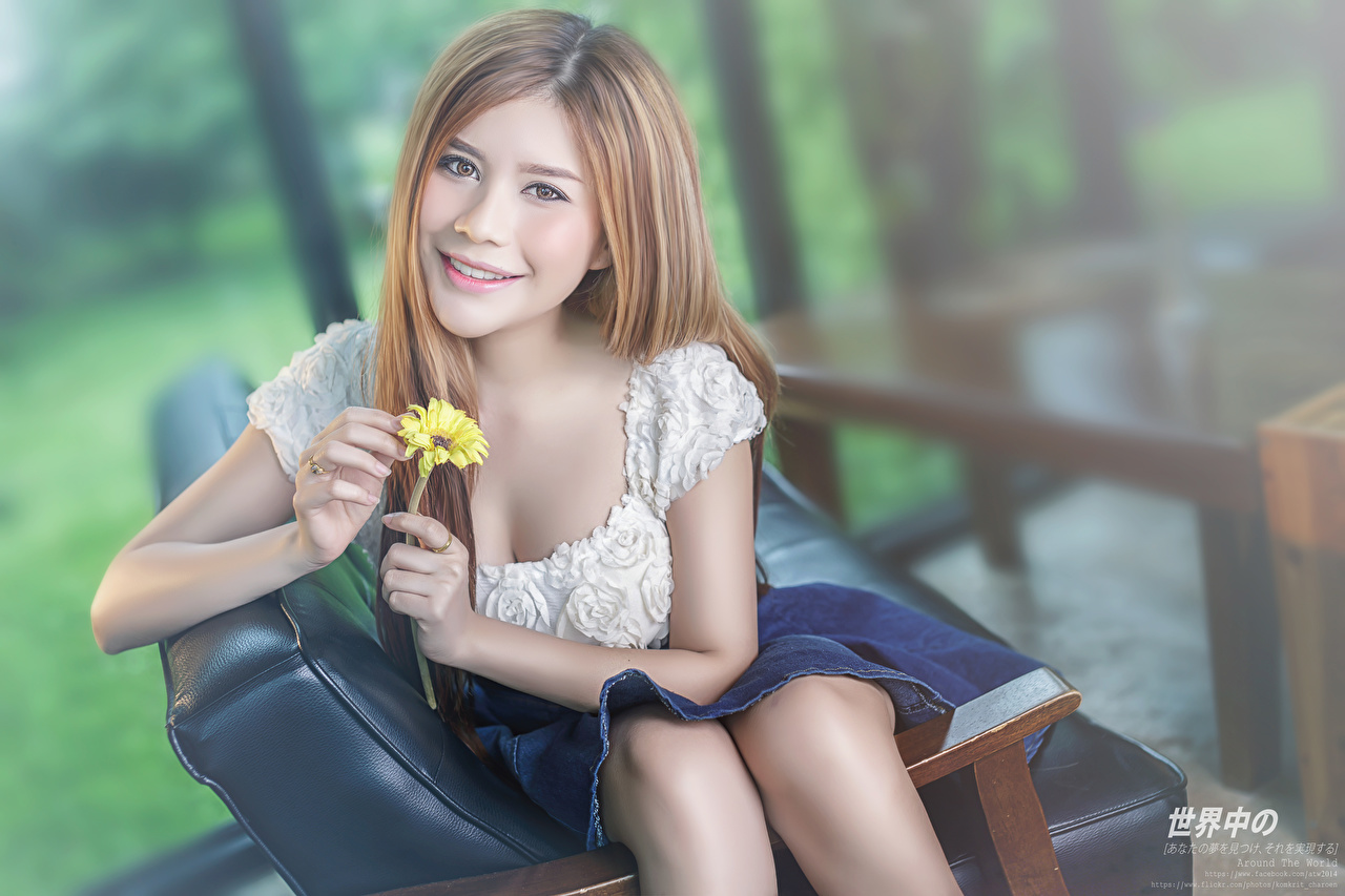 Pictures Brown haired Smile Bokeh Girls Hands Staring blurred background female young woman Glance