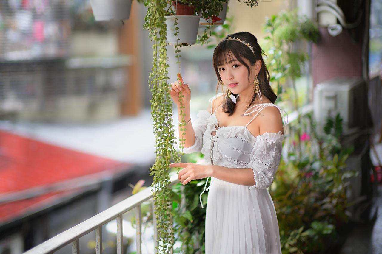 Bilder von unscharfer Hintergrund Mädchens Asiatische Blick Kleid Bokeh junge frau junge Frauen Asiaten asiatisches Starren