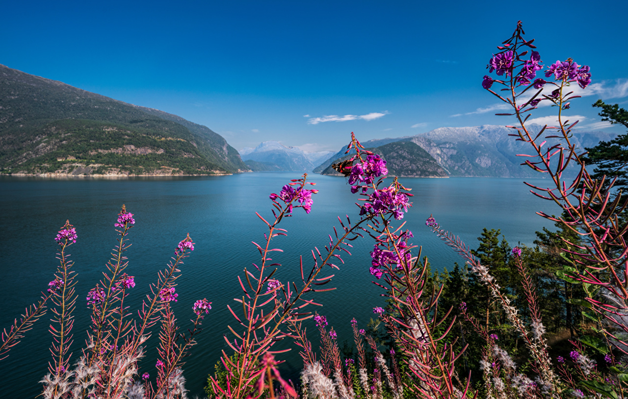 Photo Norway Hardangerfjord Nature Mountains Sky mountain