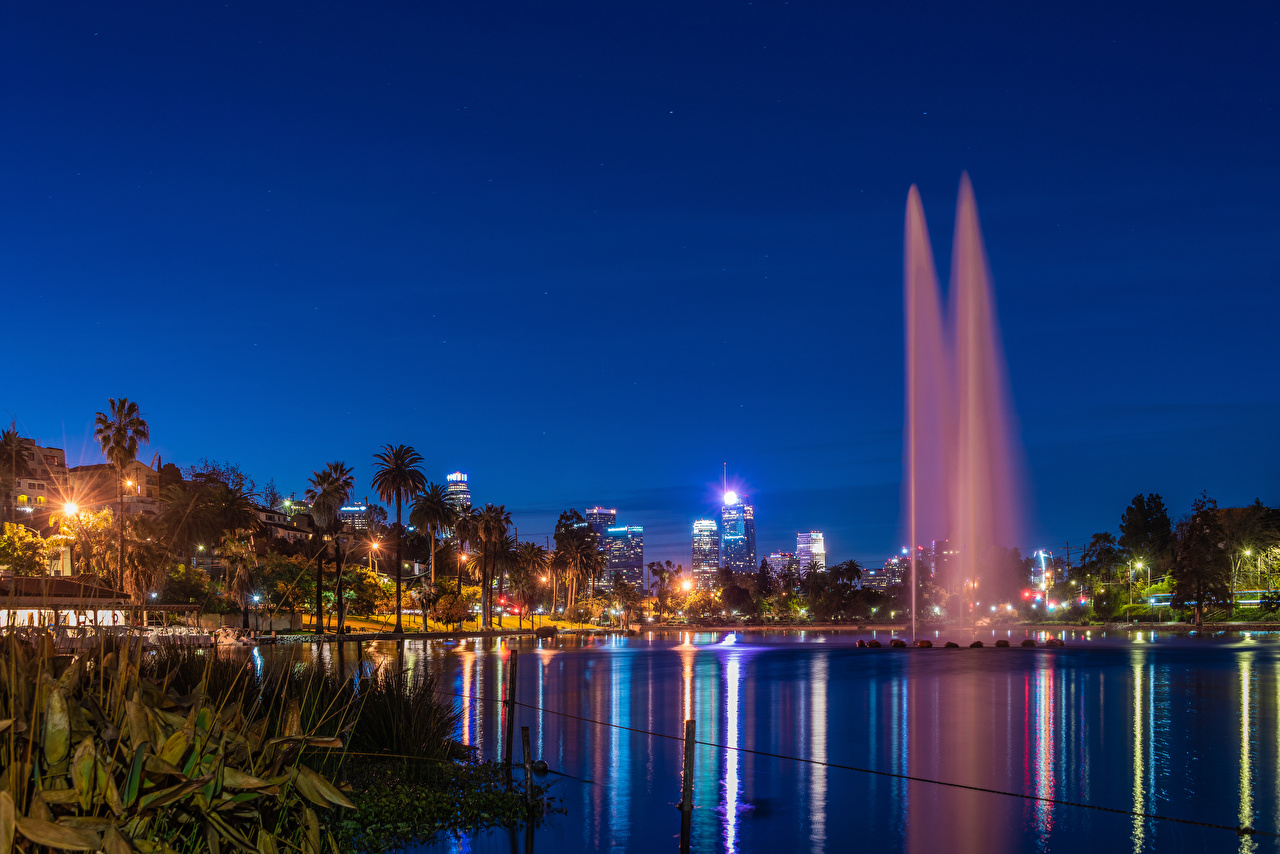 Wallpaper Rays of light California Los Angeles USA Fountains Echo Park Lake Nature park palm trees night time Cities Parks Palms Night