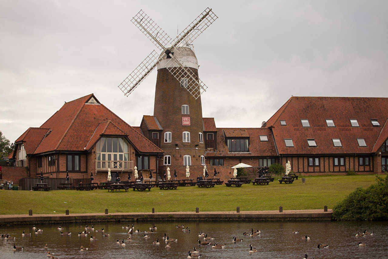 Photos duck England windmill Milton Keynes, Buckinghamshire County Cafe Pond Cities Ducks Mill windmills