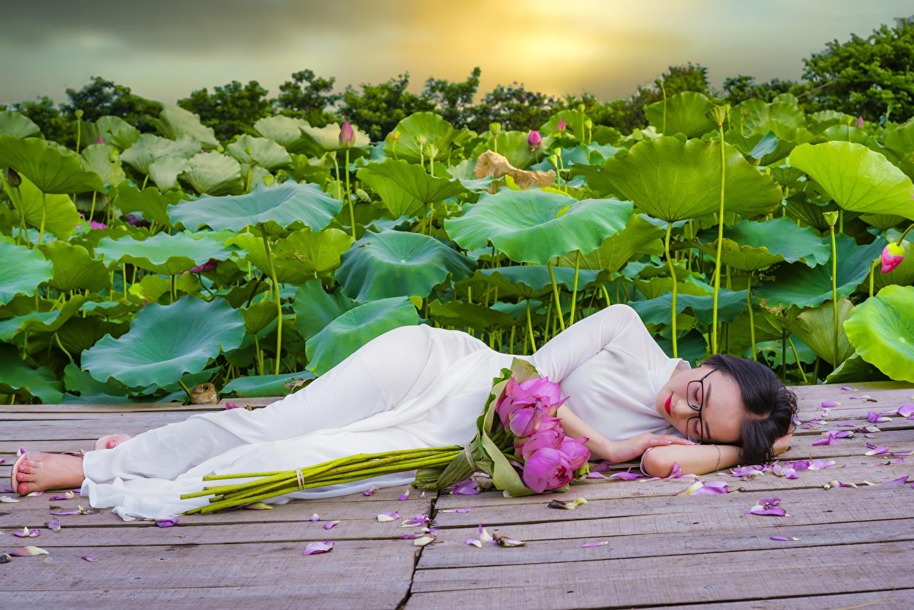 Bilder von Brünette Liegen Blumensträuße schlafen junge frau Lotus Asiaten Brille Kleid Liegt ruhen hinlegen Sträuße Schlaf schläft Mädchens schlafende schlafendes junge Frauen Asiatische Lotosblume asiatisches