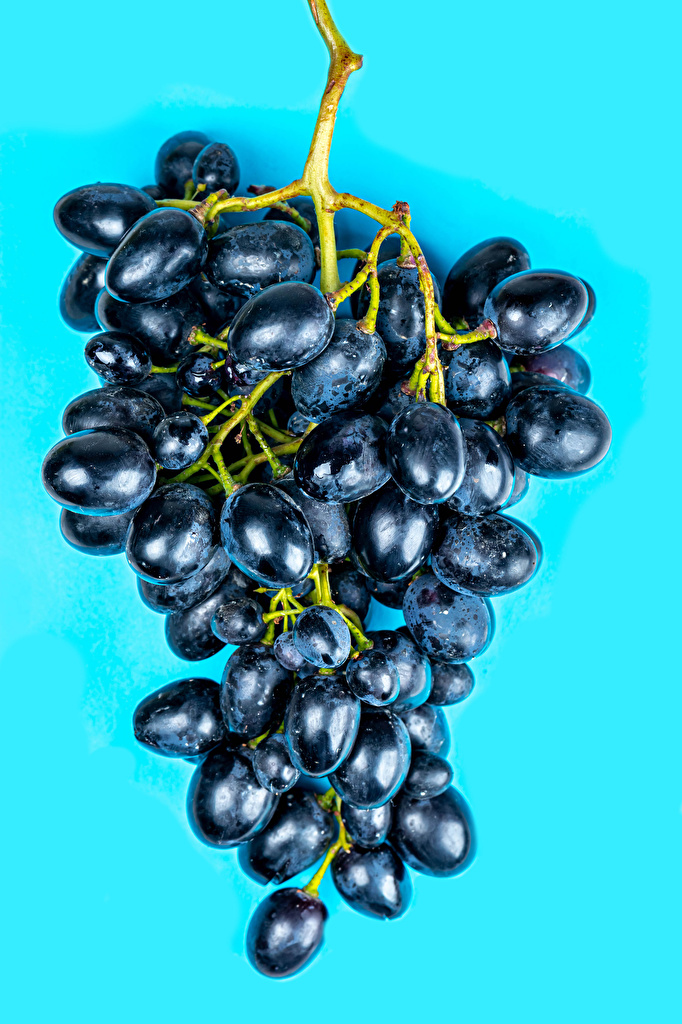 Image Grapes Food Closeup Colored background  for Mobile phone