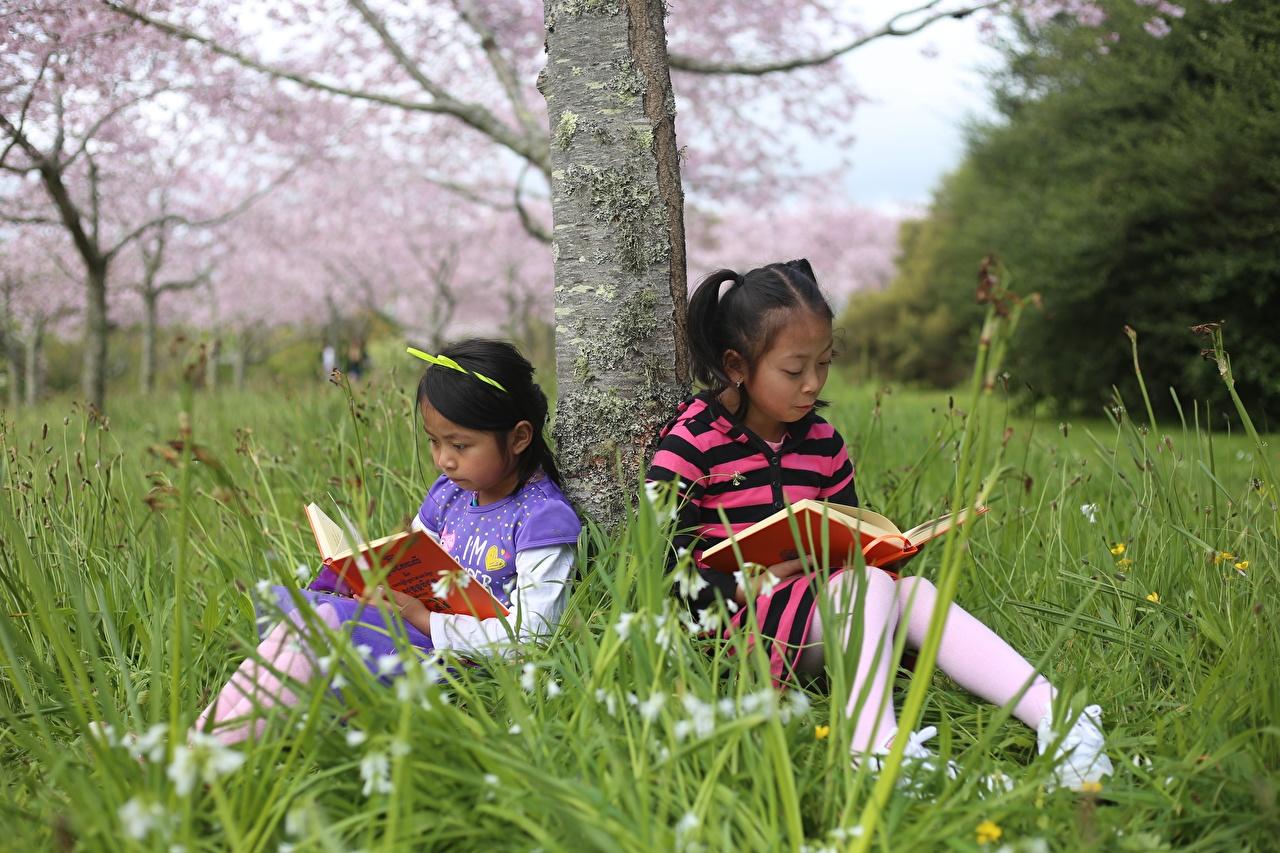Foto Kleine Mädchen Kinder 2 Baumstamm Asiatische Buch Gras sitzt Zwei sitzen Sitzend Bücher