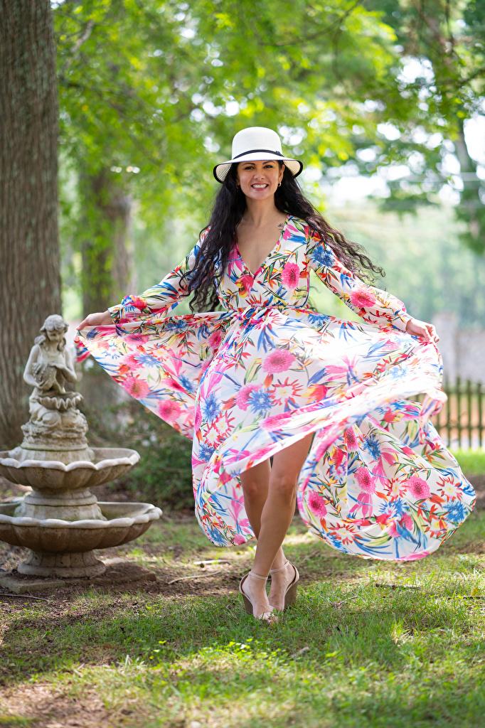 Bilder Brünette Lächeln Victoria Bell Der Hut Mädchens Kleid  für Handy junge frau junge Frauen