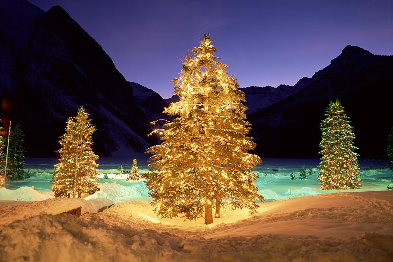 navidad naturaleza