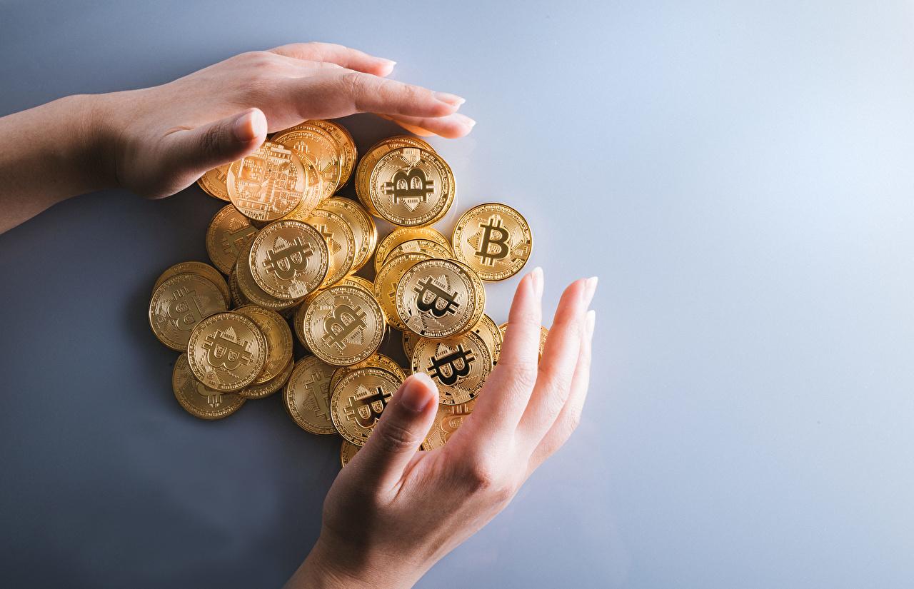 Foto Münze Bitcoin Gold Farbe Hand Geld Viel Grauer Hintergrund