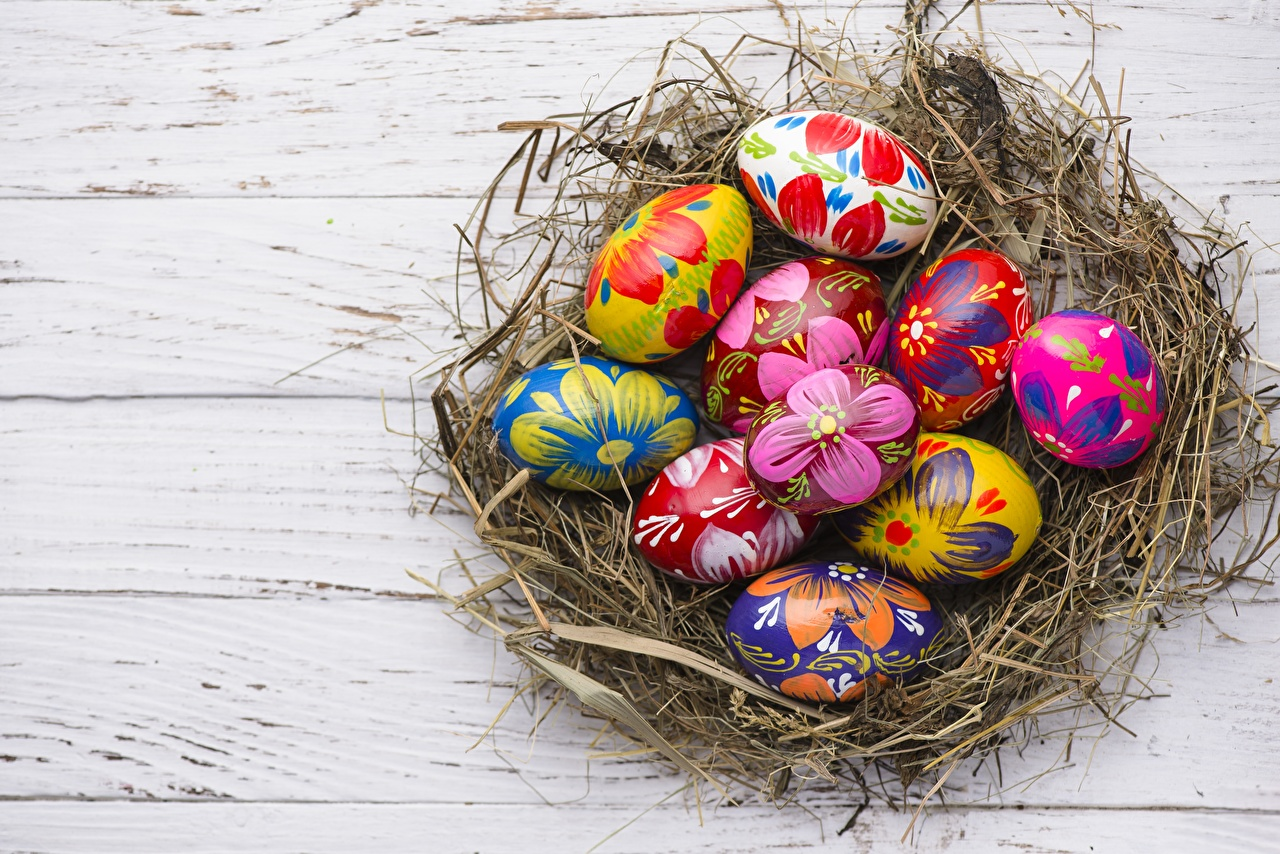 Desktop Hintergrundbilder Ostern Ei Nest eier