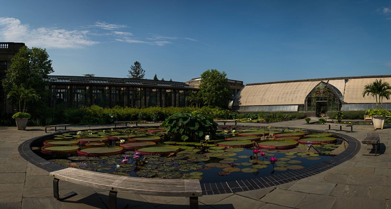 Foto Amerika Longwood Gardens Natuur Tuin Vijver nymphaea Tuinbank Huizen verenigde staten tuinen Waterlelies gebouw gebouwen
