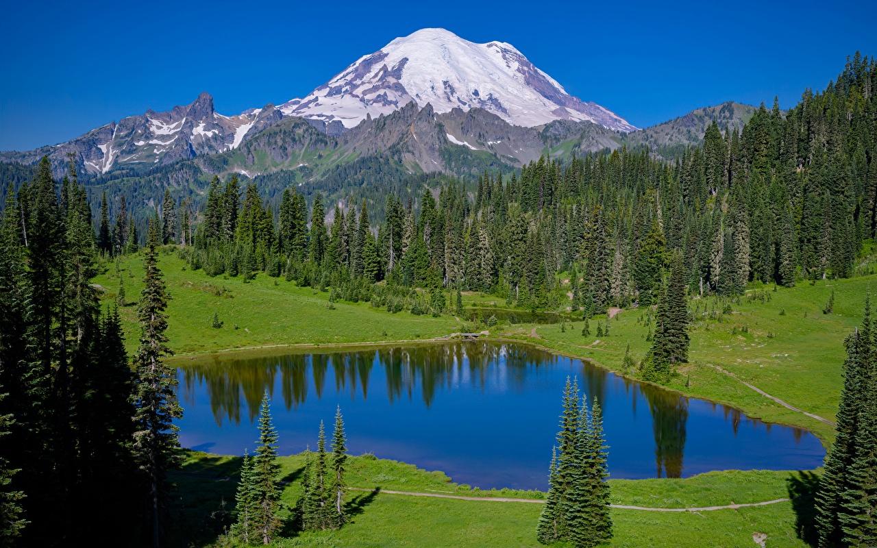 Fotos von USA Mount Rainier national Park, Tipsoo Lake, Washington state Berg Natur See Park Wald Vereinigte Staaten Gebirge Parks Wälder