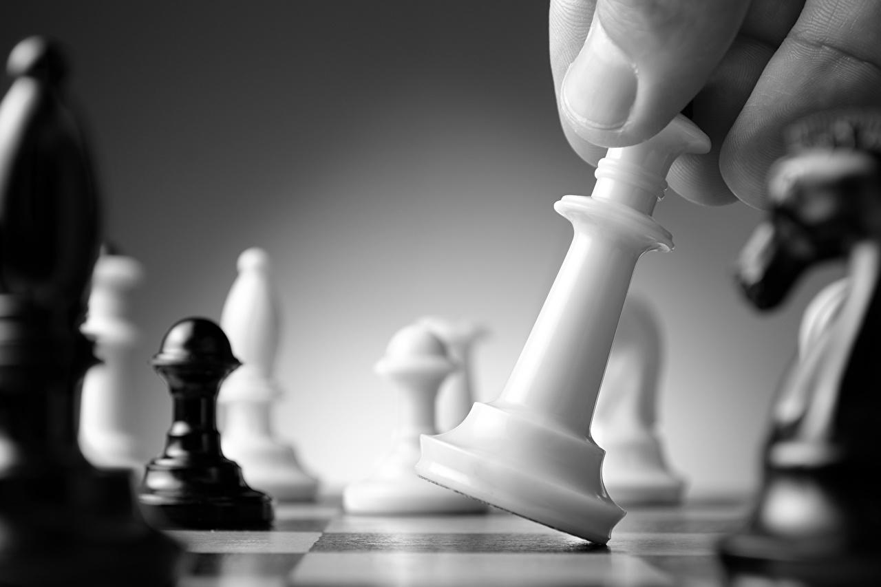 壁紙 チェス クローズアップ ダウンロード 写真