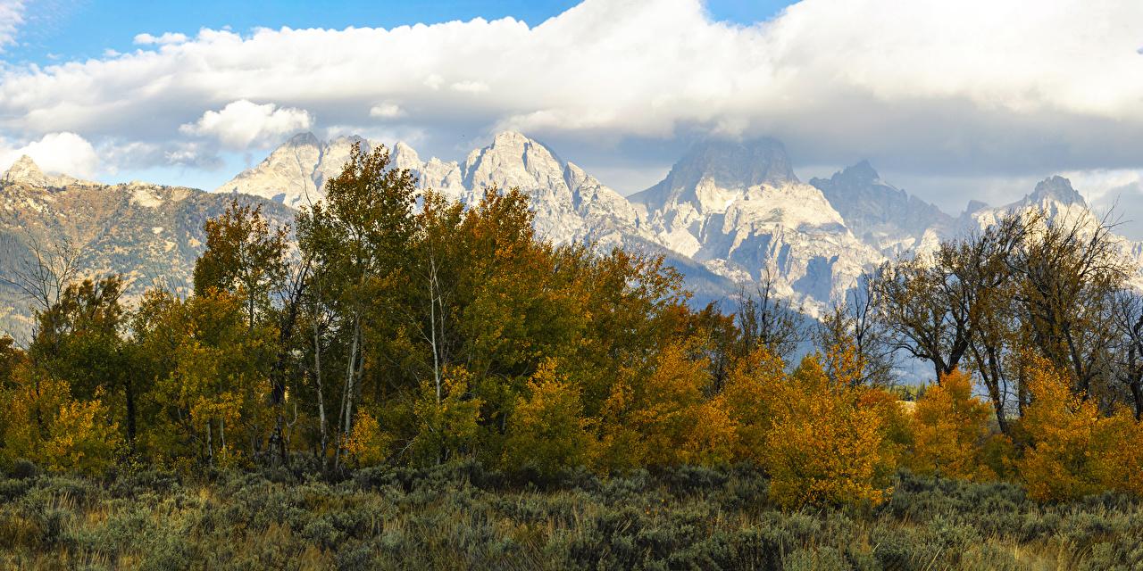 Bilder von USA Grand Teton National Park Berg Natur Herbst Bäume Strauch Vereinigte Staaten Gebirge Parks