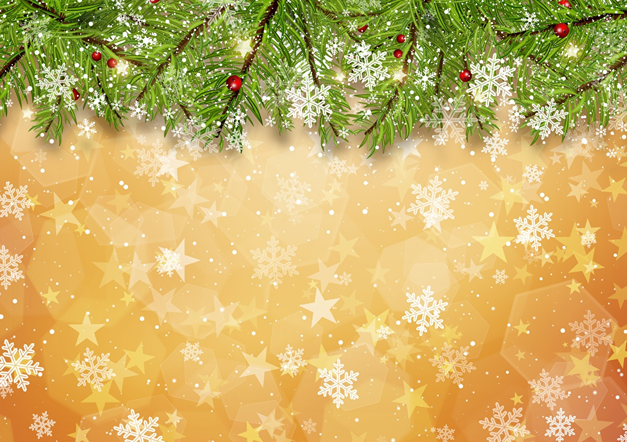 Wallpaper Christmas Snowflakes Branches New year