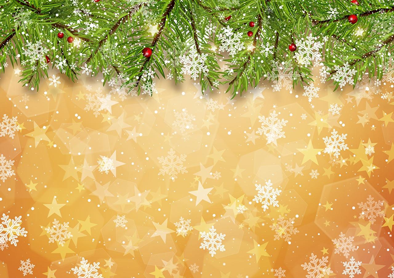 Desktop Hintergrundbilder Neujahr Schneeflocken Ast