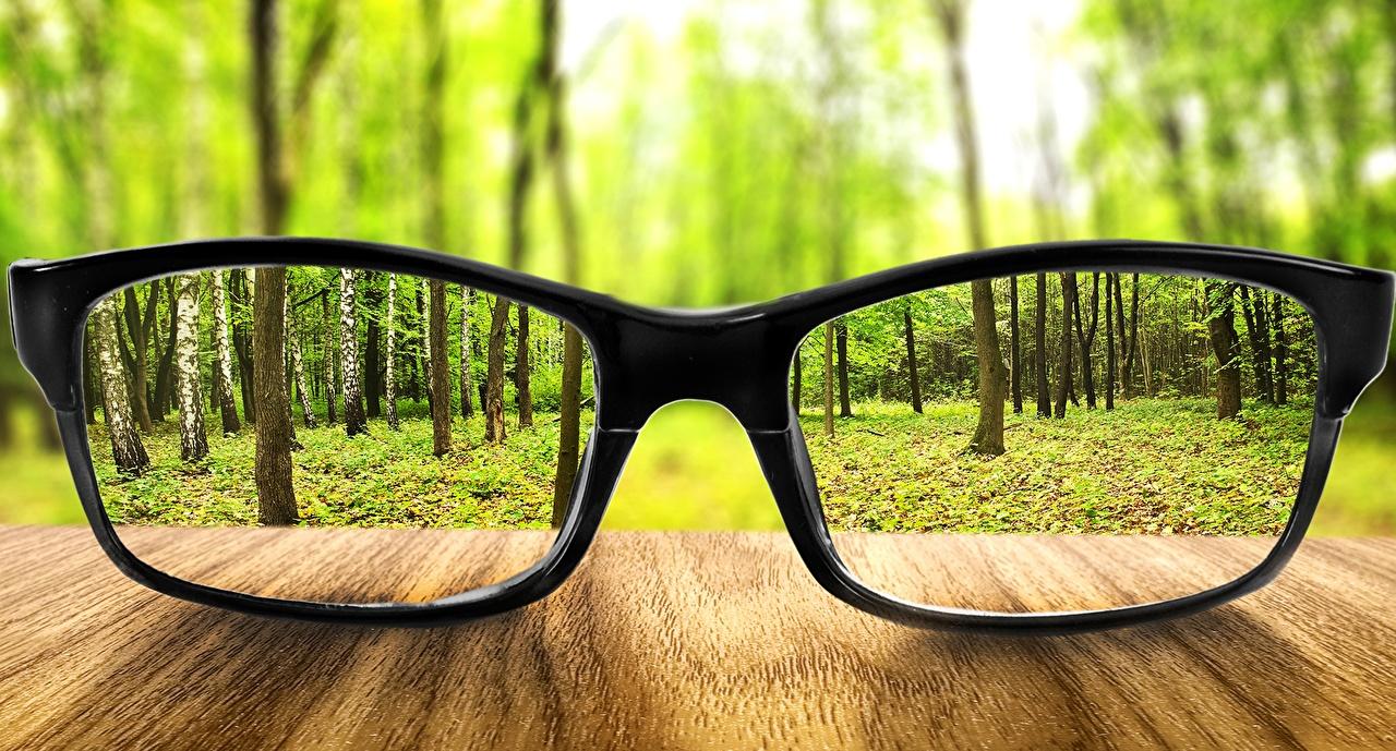 Tapeta na pulpit las Okulary zbliżenie Lasy Z bliska