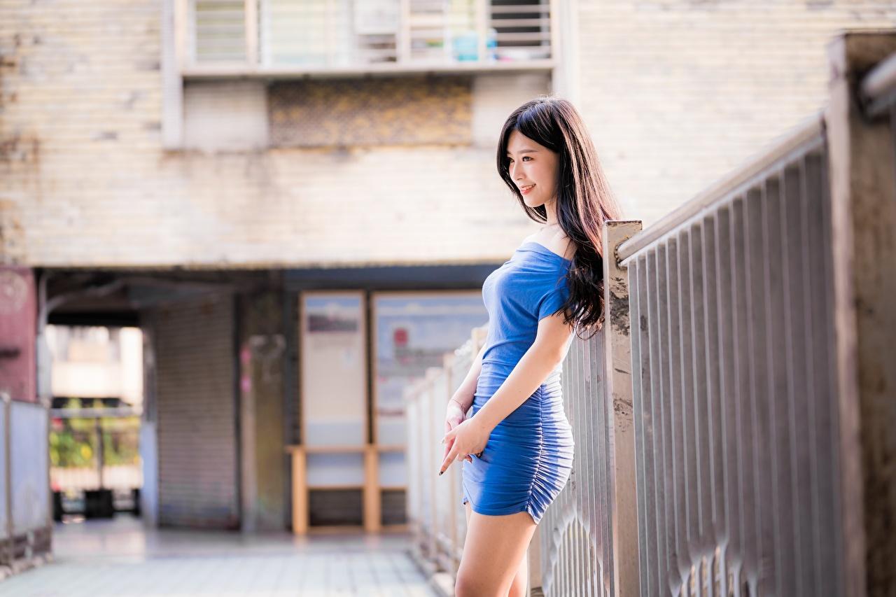 Tapety na pulpit Brunetka Uśmiech rozmazane tło Dziewczyny zagroda azjatycka Ręce Sukienka Bokeh dziewczyna młoda kobieta młode kobiety Płot Azjaci