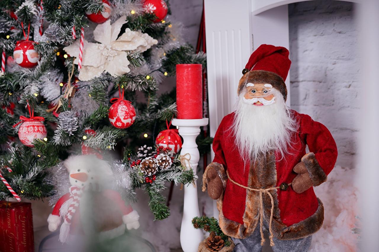 Desktop Hintergrundbilder Neujahr bärte Mütze Christbaum Weihnachtsmann bärtige Barthaar bärtiger Tannenbaum Weihnachtsbaum