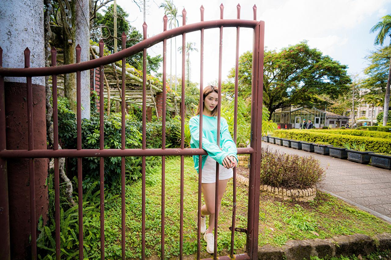 Bilder Pose junge frau Zaun Asiatische posiert Mädchens junge Frauen Asiaten asiatisches