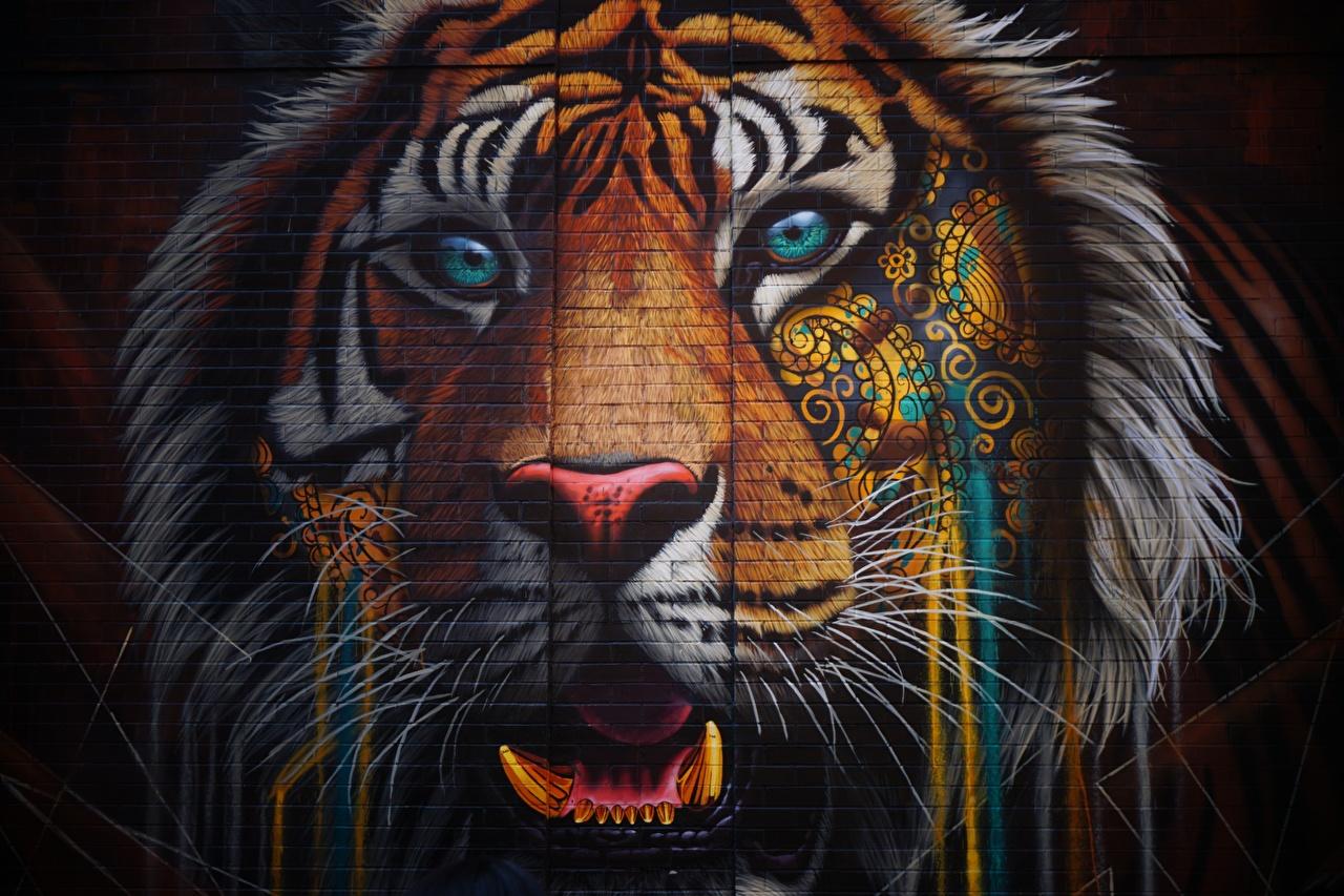 Desktop Wallpapers tiger Graffiti Made of bricks Snout walls Head Glance animal Tigers Wall Staring Animals