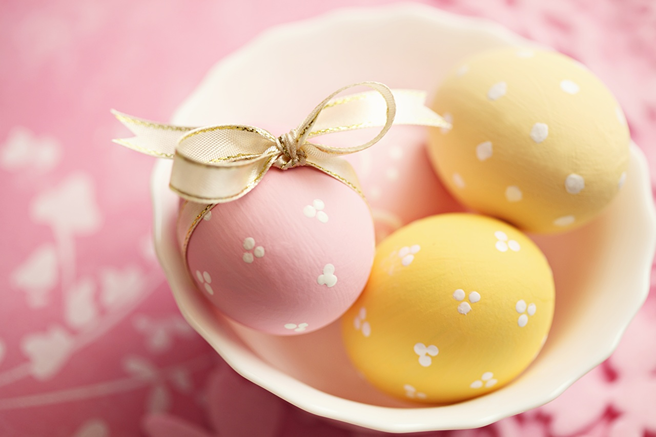 Foto Ostern Ei Schüssel Schleife eier