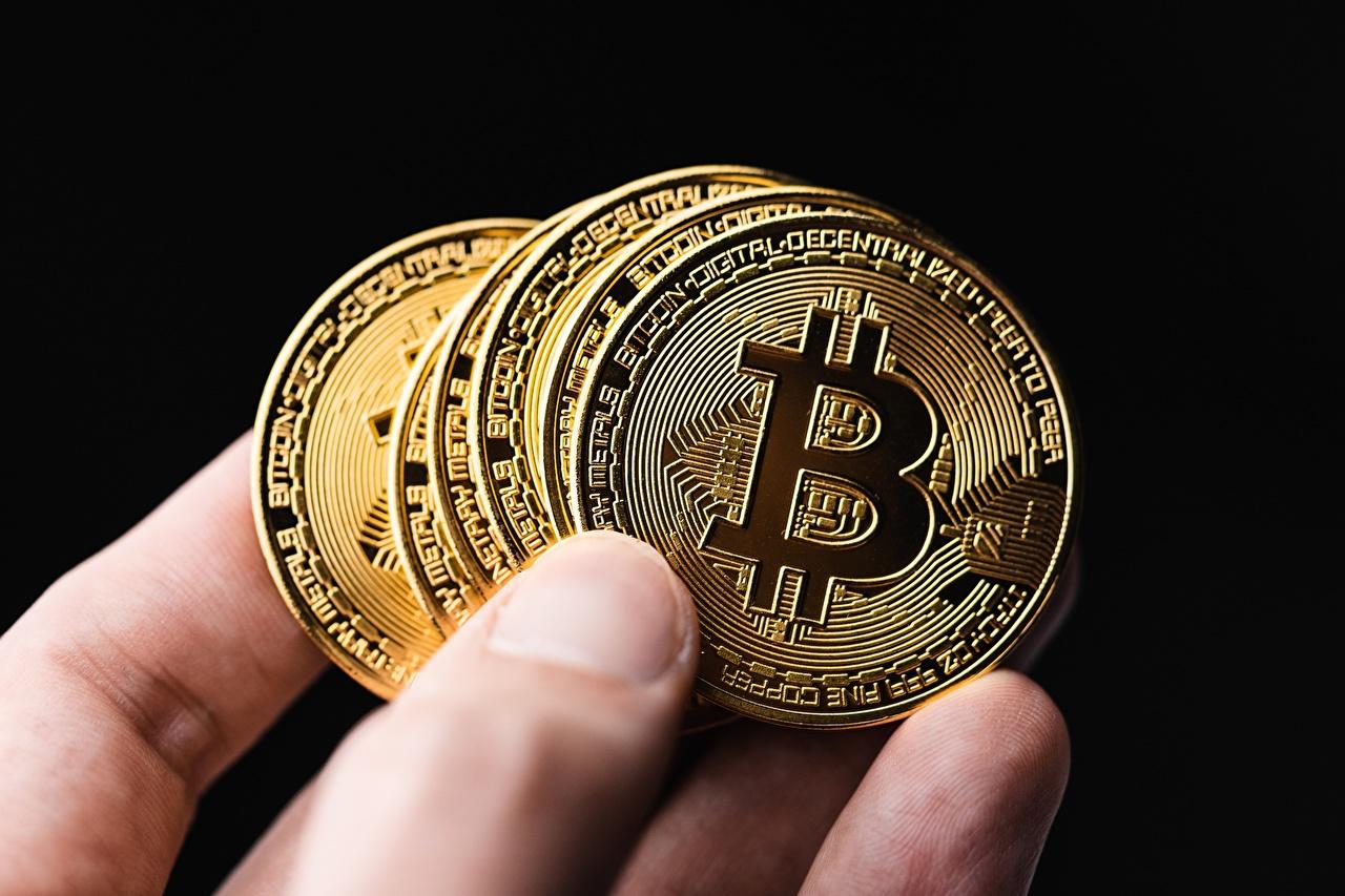 Bilder Münze Bitcoin Geld Finger Großansicht Schwarzer Hintergrund hautnah Nahaufnahme