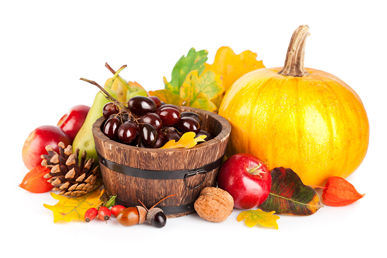 Image Foliage Autumn Pumpkin Grapes Apples Food Pine cone Nuts White background Leaf Conifer cone