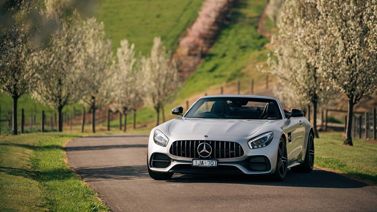 Bilder von Mercedes-Benz AMG 2018 GT C Roadster Vorne automobil auto Autos