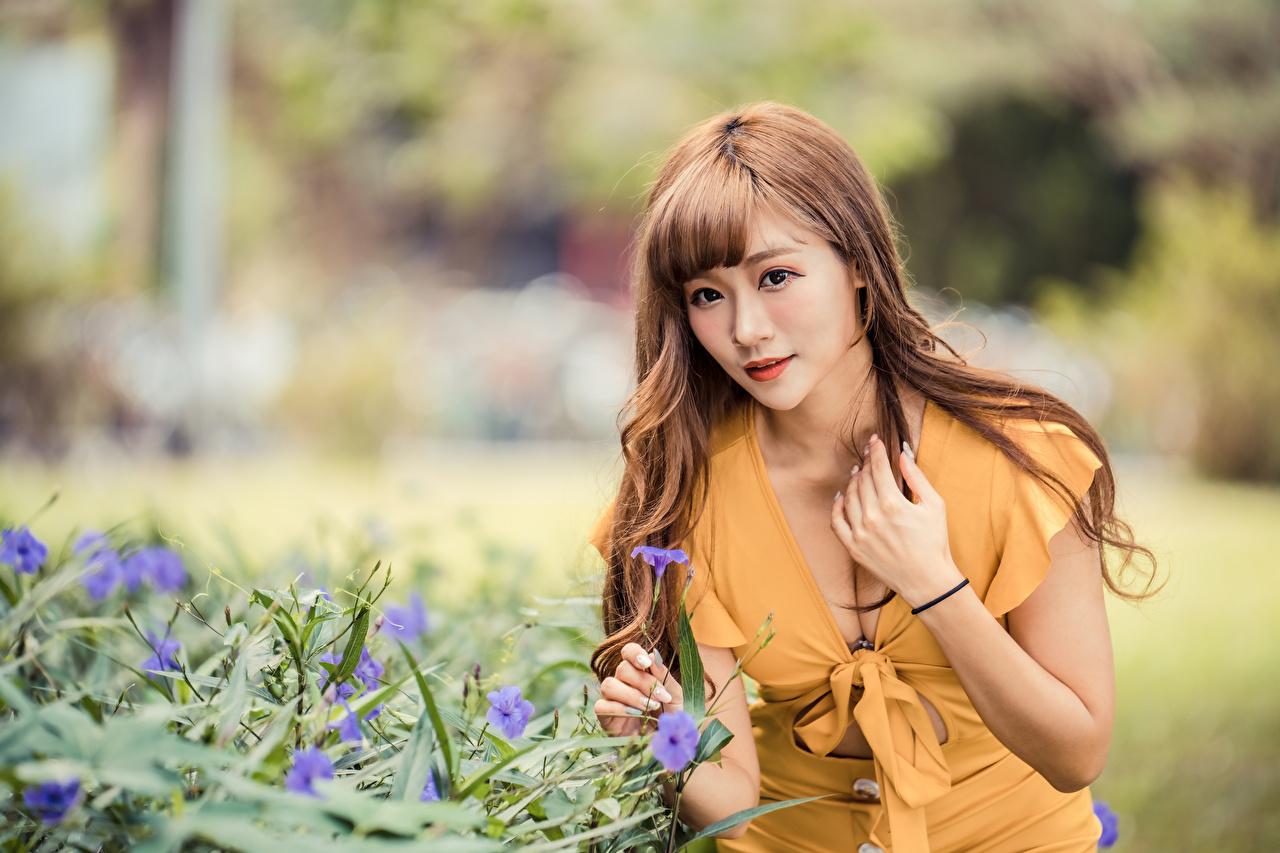 Foto Brunhårig tjej suddig bakgrund Dekolletage ung kvinna Asiater hand Klänning Bokeh urringning Unga kvinnor asiatisk Händer