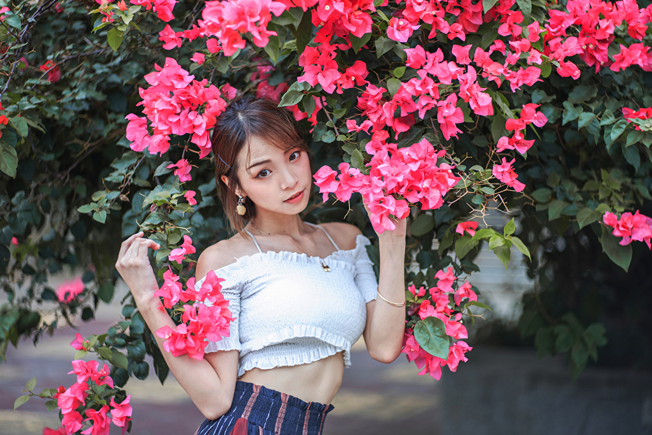 Image Brown haired Pose Girls Asiatic Glance Flowering trees posing female young woman Asian Staring