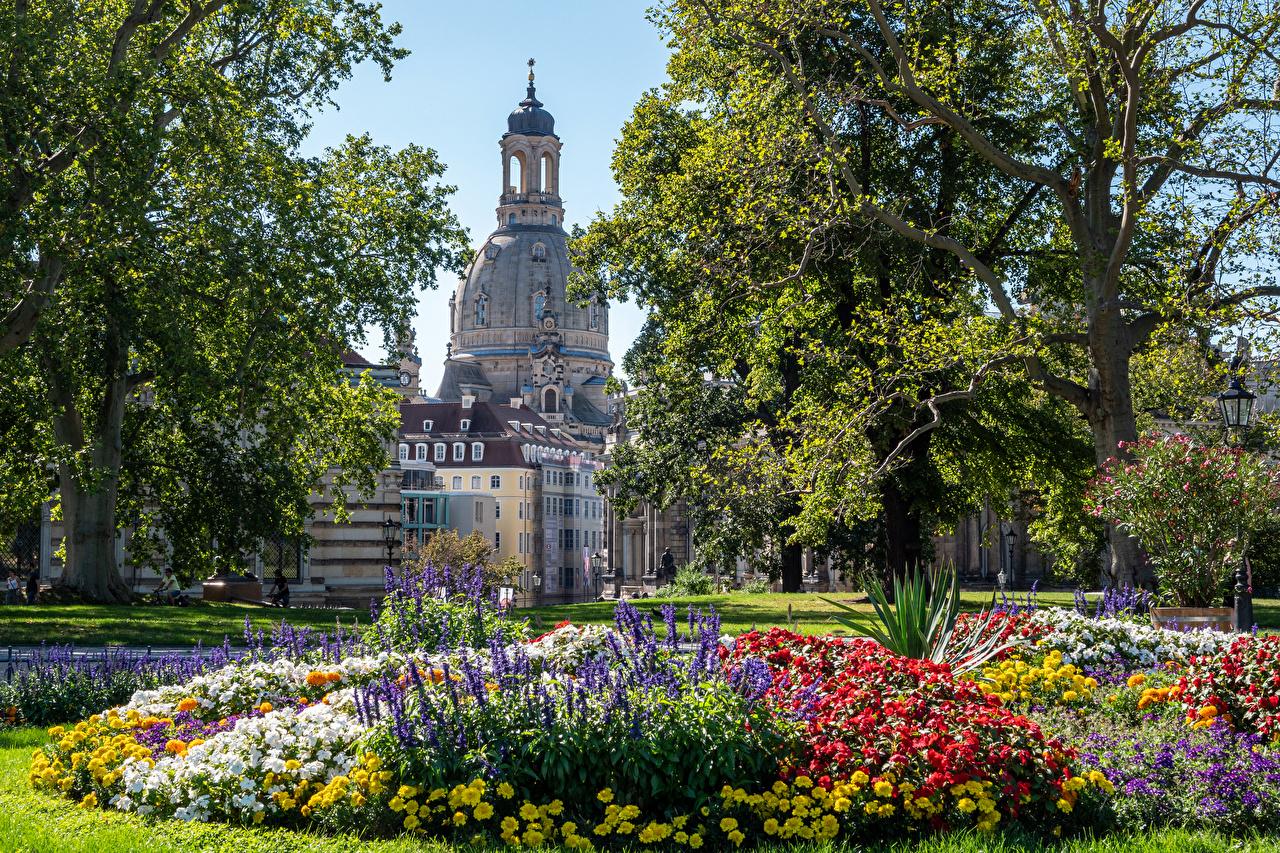 Fotos Dresden Deutschland Park Haus Bäume Städte Parks Gebäude