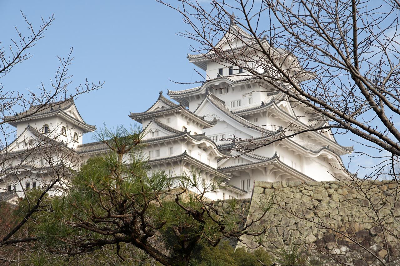 Japão Castelo Himeji Castle, Hyogo prefecture Galho Cidades